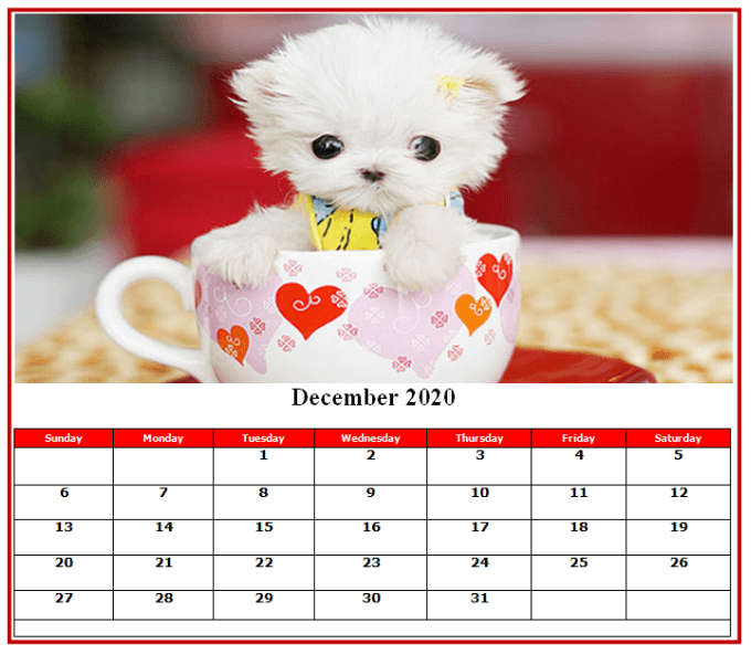 Cute 2020 December Calendar