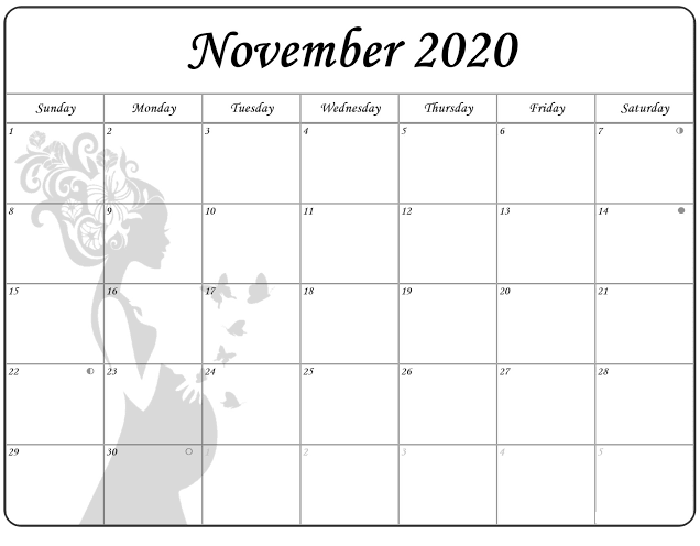 Cute 2020 November Calendar Layout