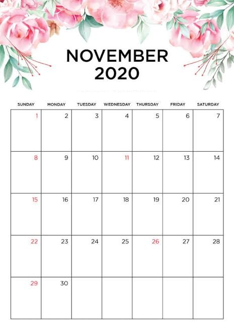 Cute 2020 November Calendar With Holidays