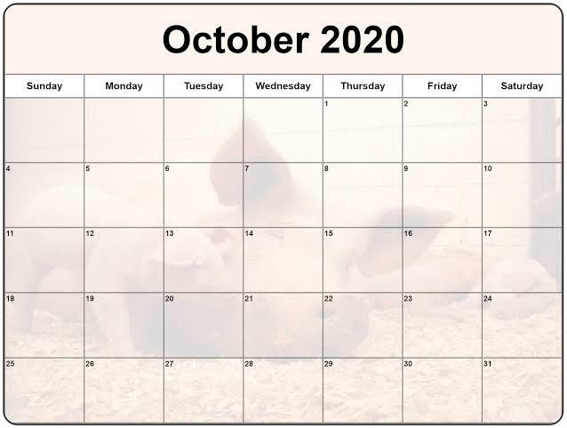 Cute 2020 October Calendar