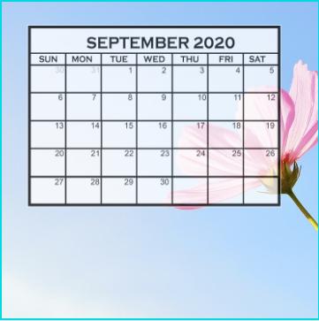 Cute 2020 September Calendar