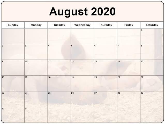 Cute August 2020 Calendar Landscape