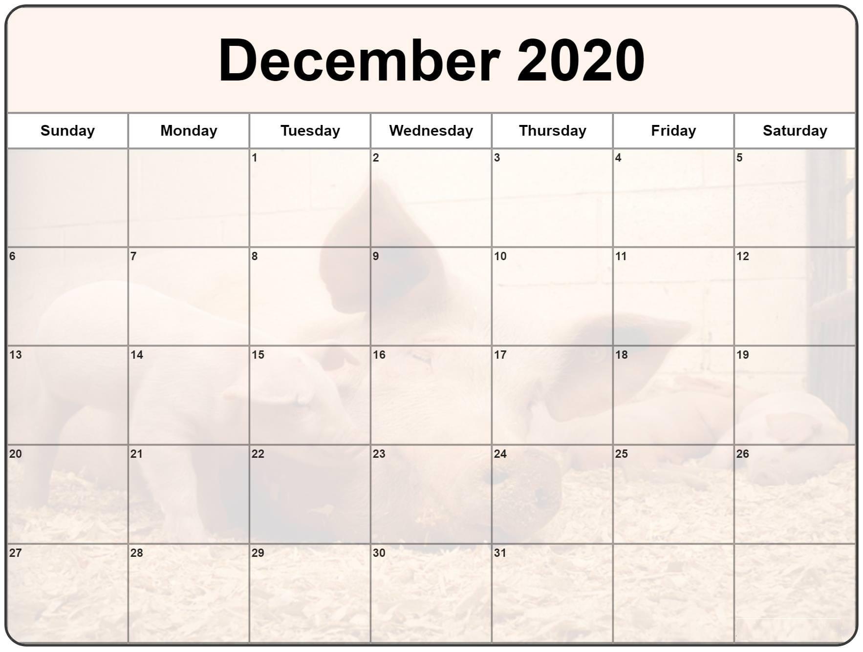 Cute December 2020 Calendar Free Printable