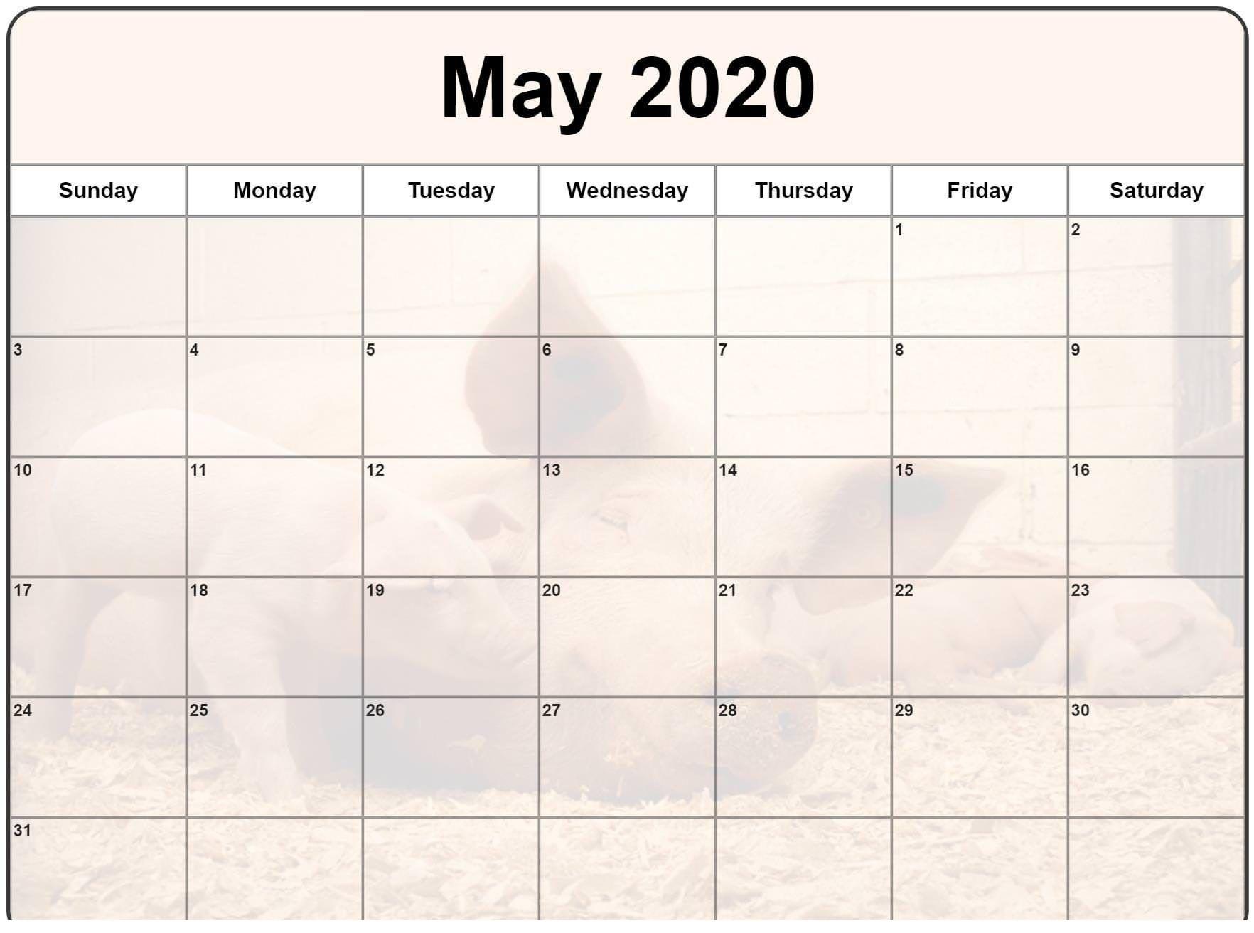 2020 May Calendar Editable