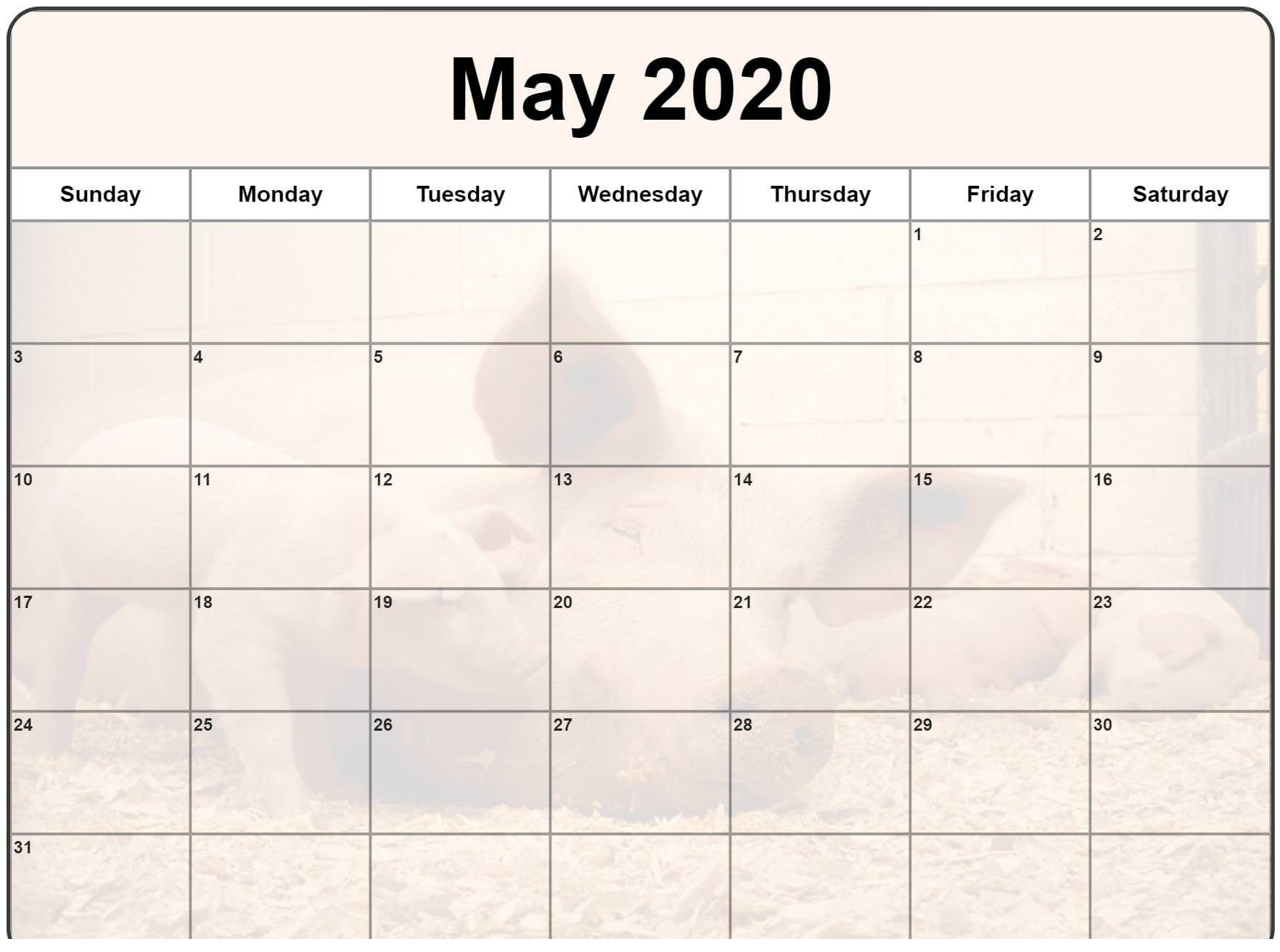 Calendar For 2020 May