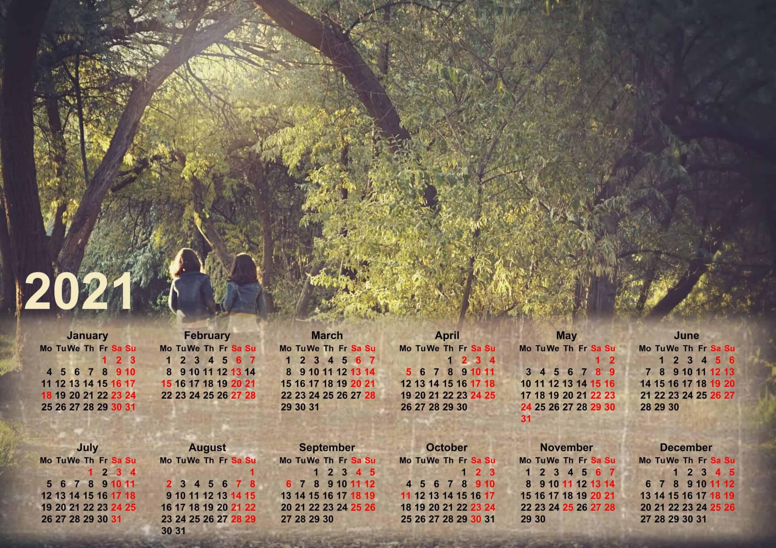 Calendar 2021 wall calendar