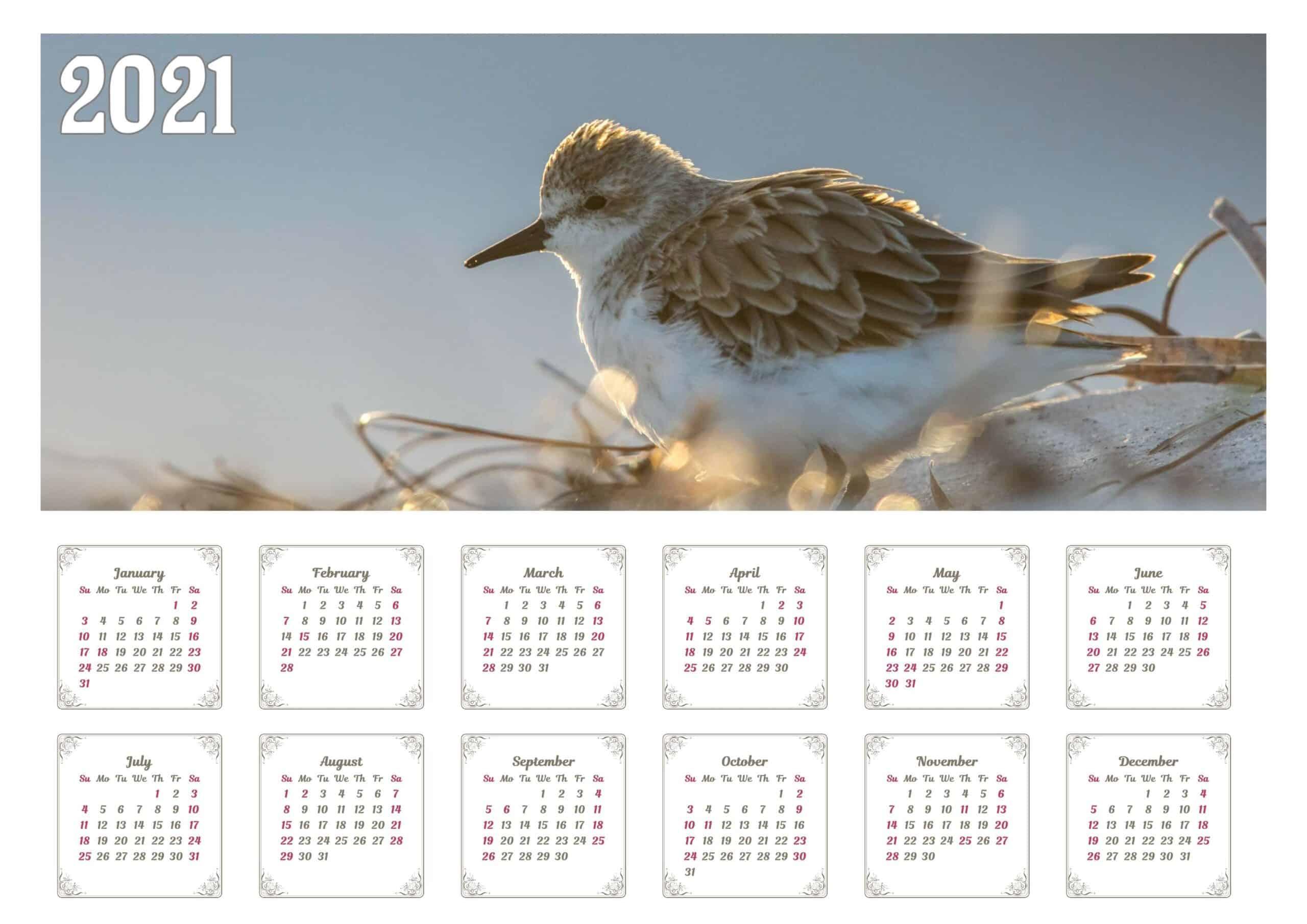 Cute 2021 calendar