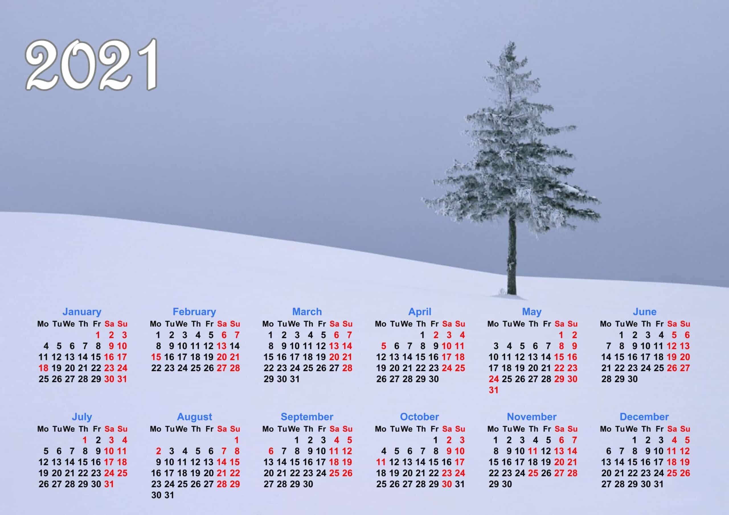 calendar 2021 whole year