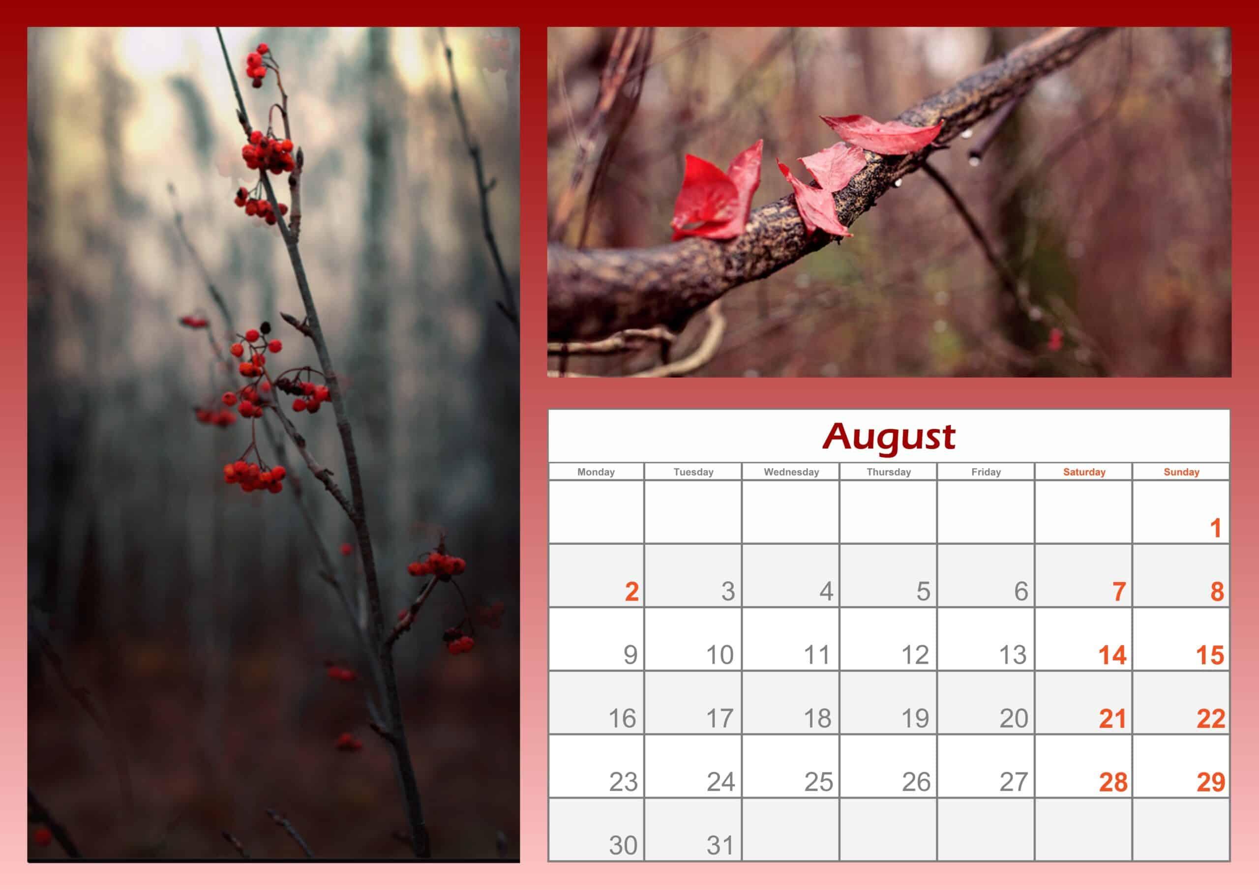 2021 August Calendar Printable