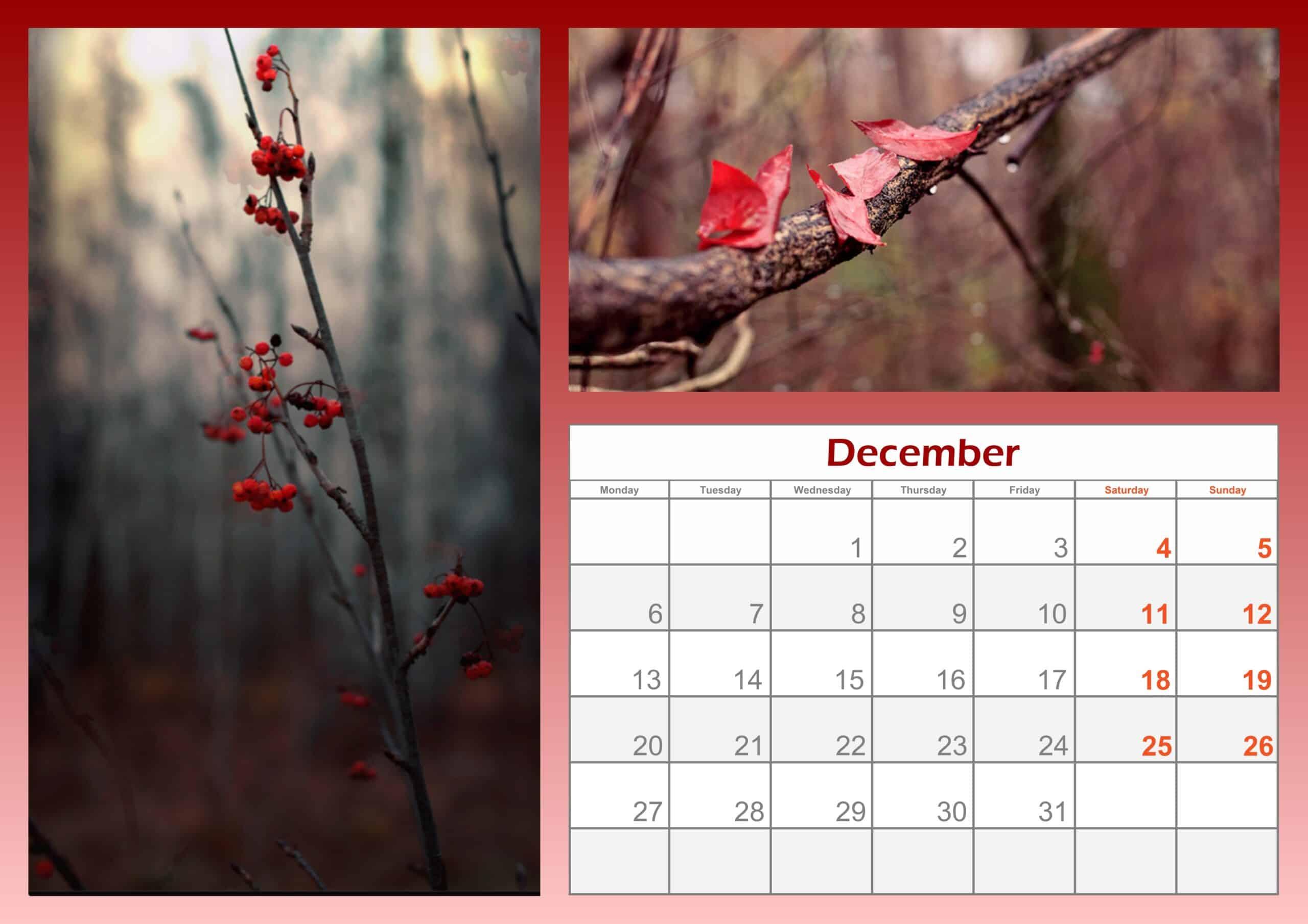 2021 December Calendar Printable