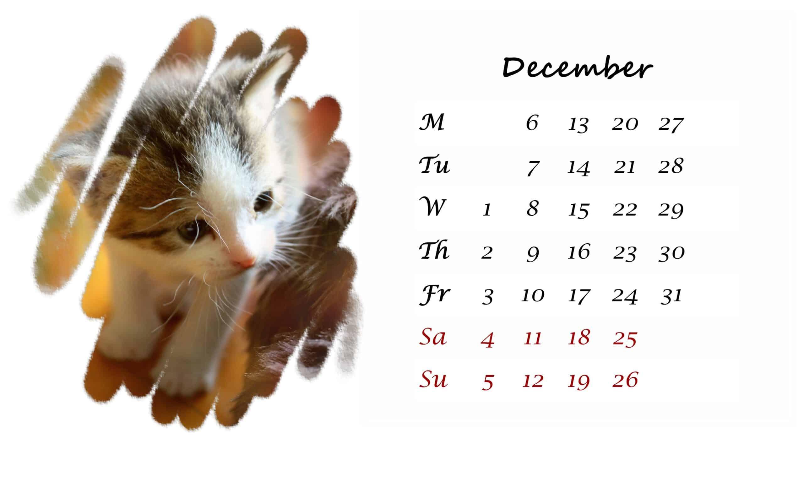 2021 December printable calendar