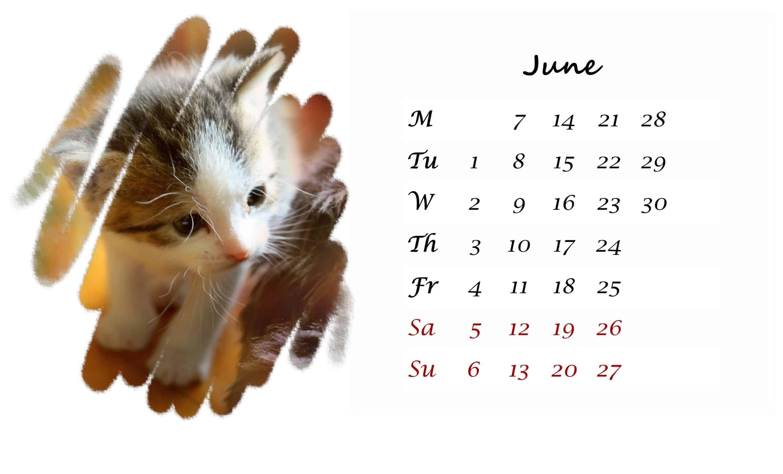 2021 June printable calendar