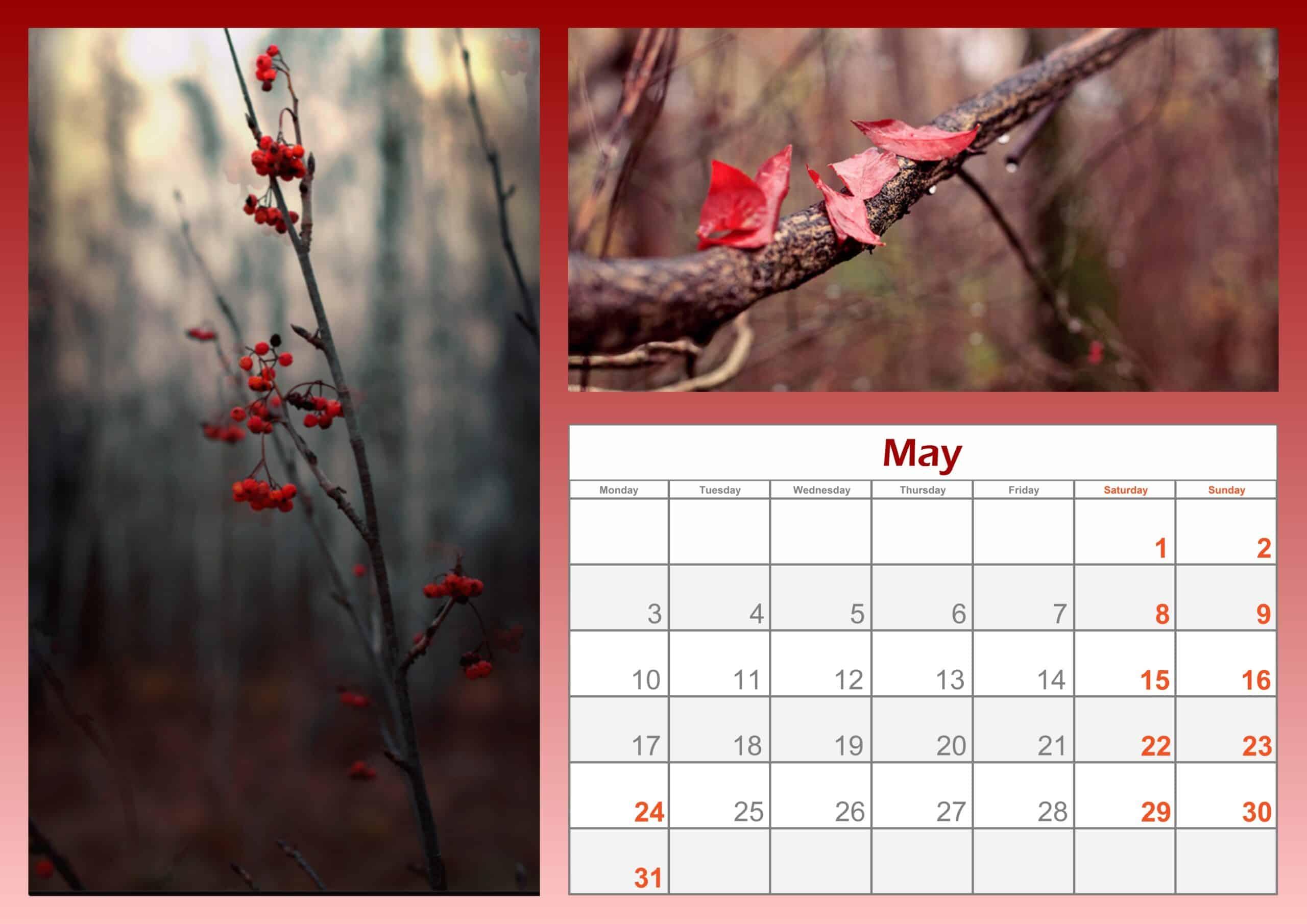 2021 May Calendar Printable