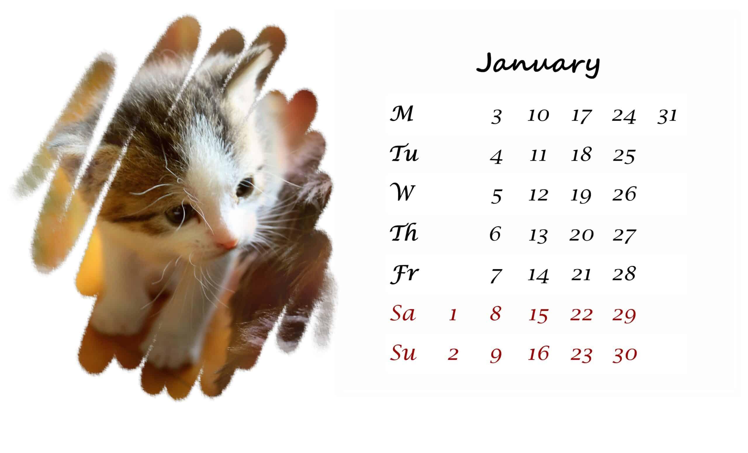2022 January printable calendar