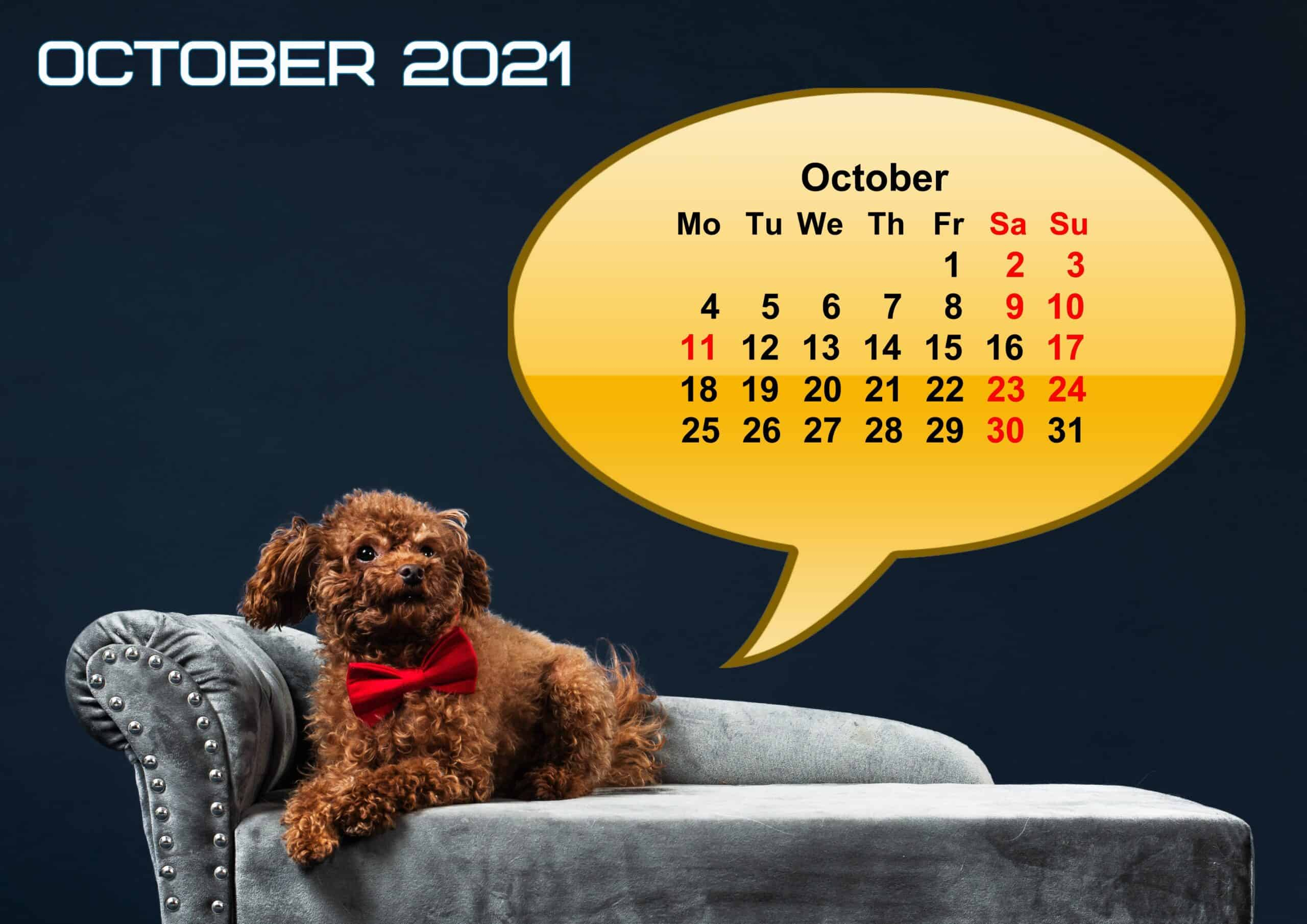 Cute October 2021 Calendar Printable
