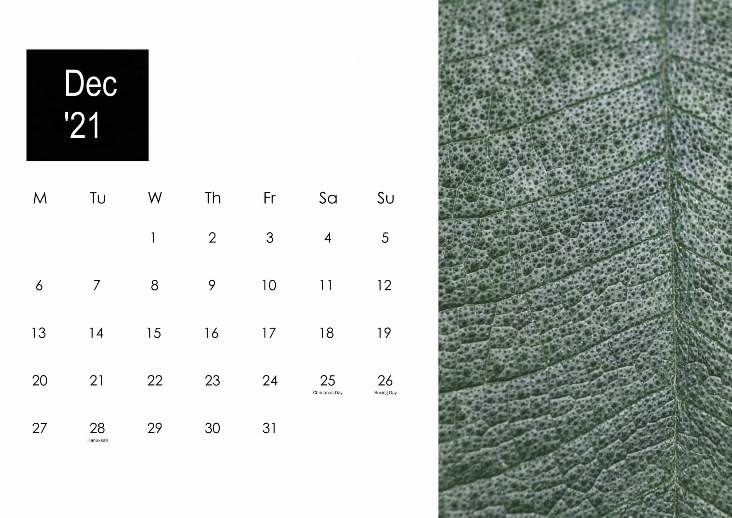 December 2021 Calendar Cute