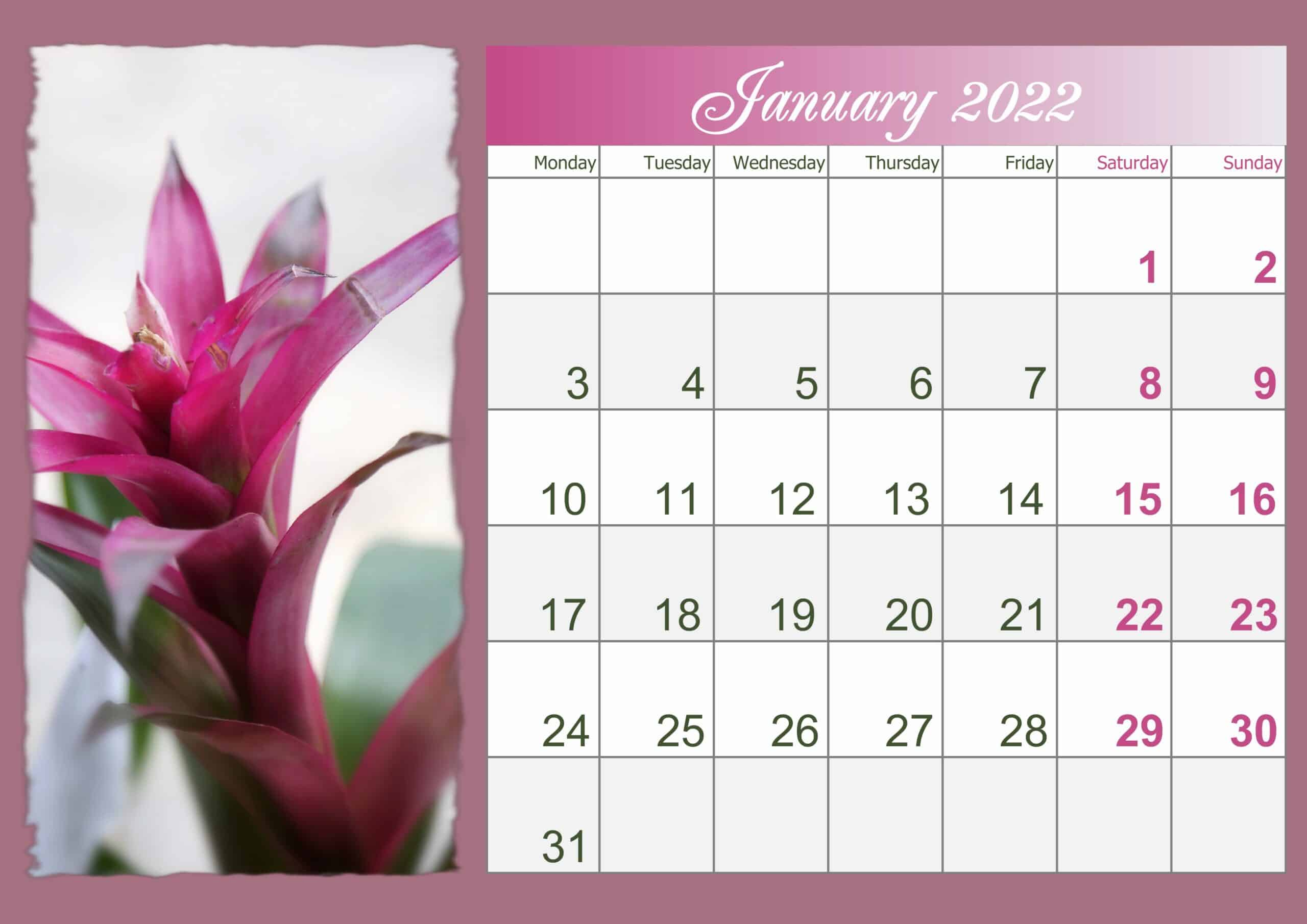 January Printable 2022 Calendar